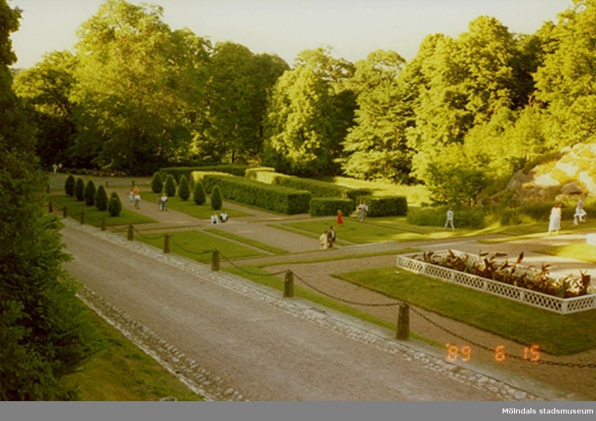 Del av parken vid Gunnebo slott.