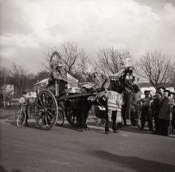 Motiv från Solängen. Häst med vagn och kusk bär dekorationer