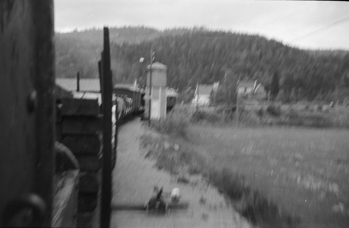 Blandet tog fra Byglandsfjord til Grovane ankommer Røyknes stasjon på Setesdalsbanen