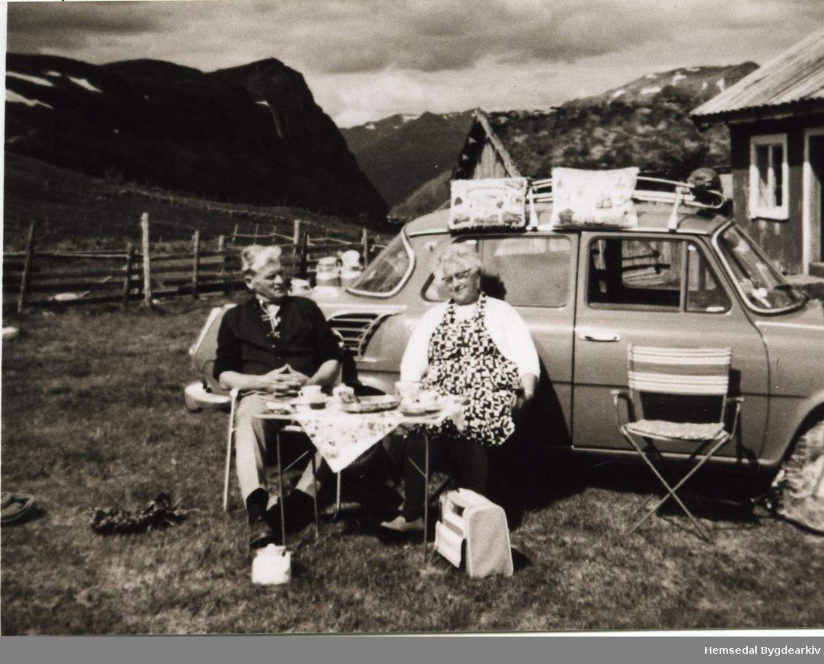 Ebba og Alf Vinnes på Leinestølen i stølsområdet Torsetstølane