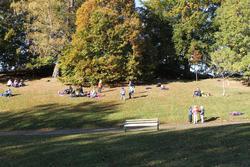 Høstferien 10.10.2012