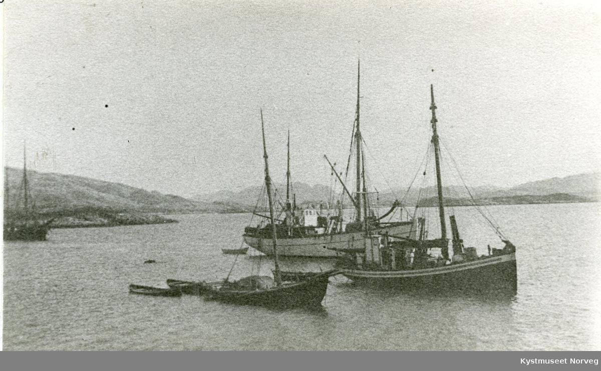Nærøysundet, Sigvart Fossaa`s fiskebåter