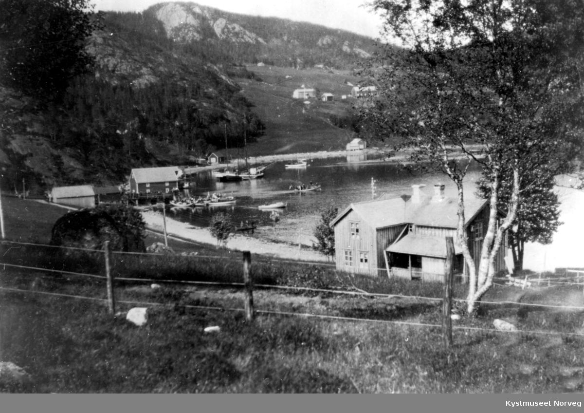 Kolvereidvågen, Nærøy kommune