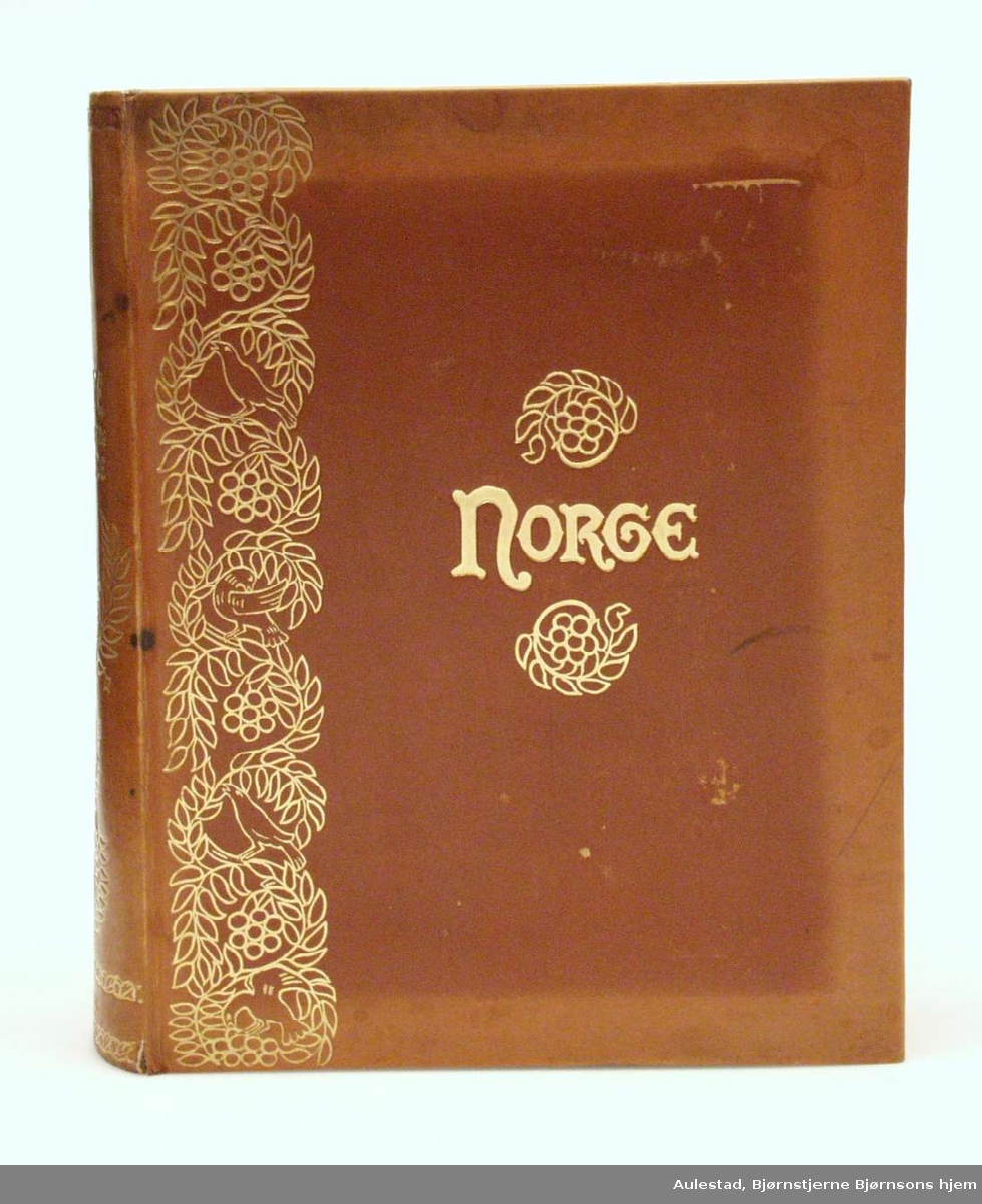 Bok i brun skinninnbinding med gyllen dekor.