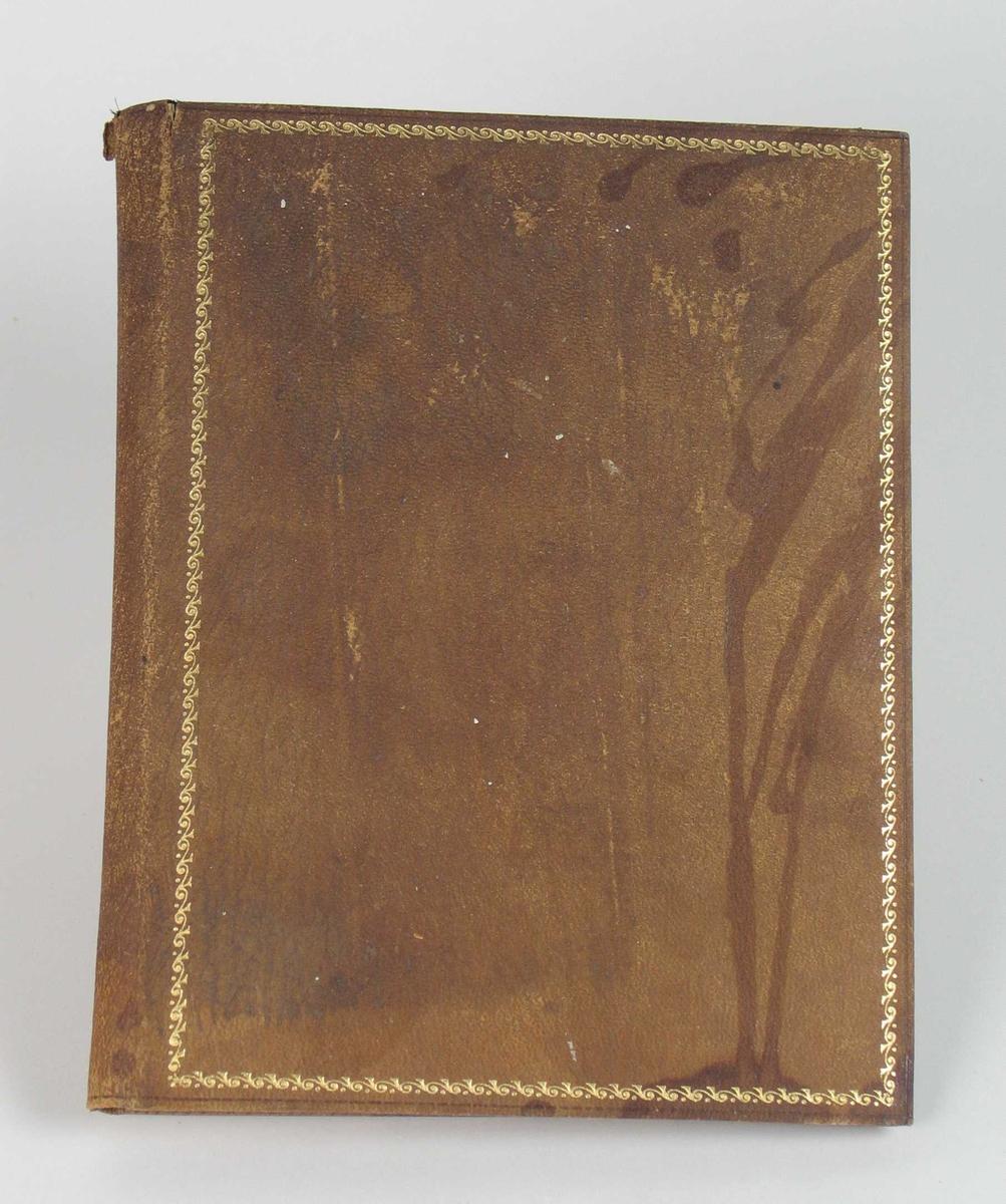 Brun skinnmappe med gyllen bord langs bildeåpningen og på omslaget.