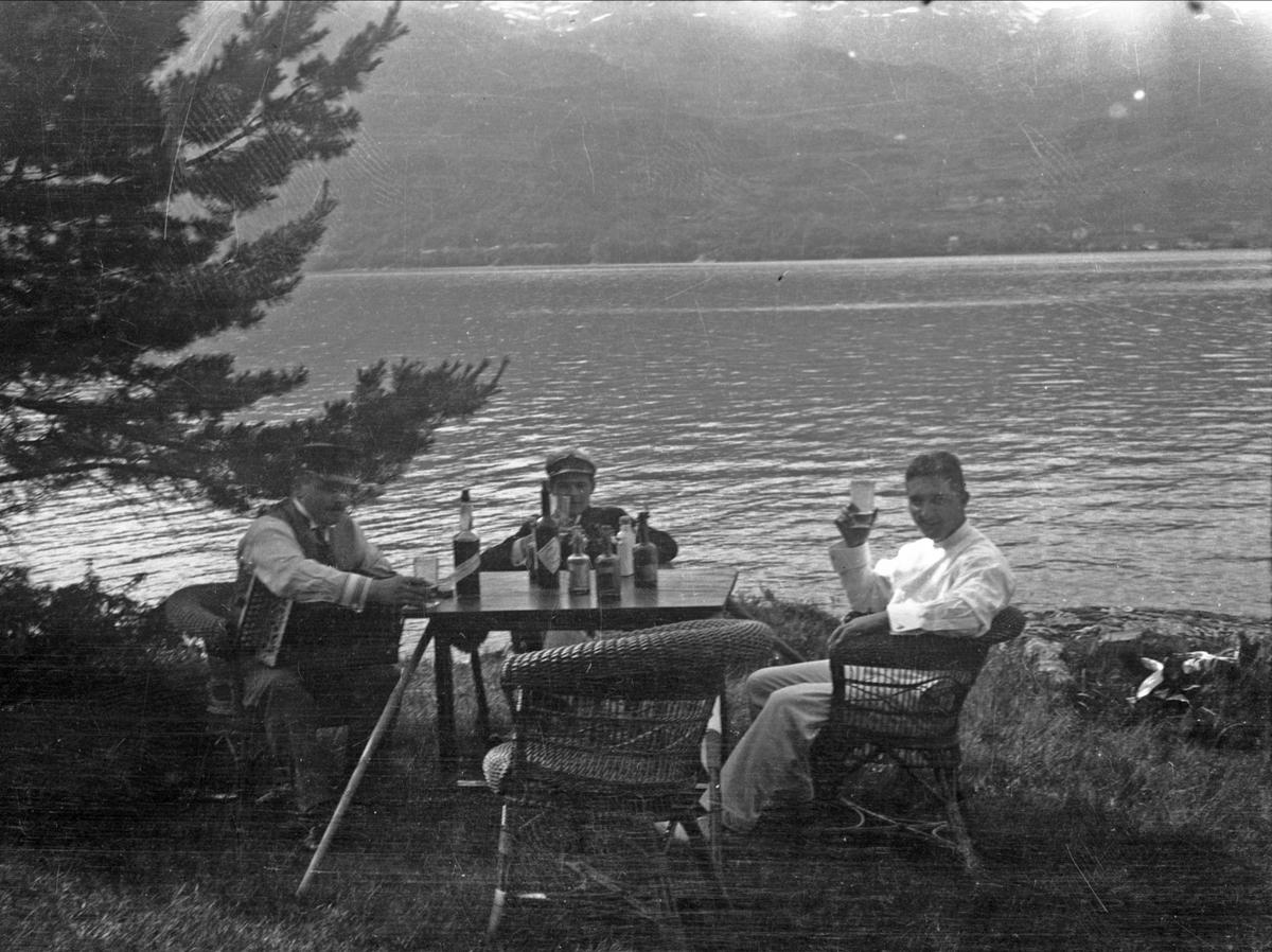Gruppe, ukjent, kurvstol, drikke, fjord,