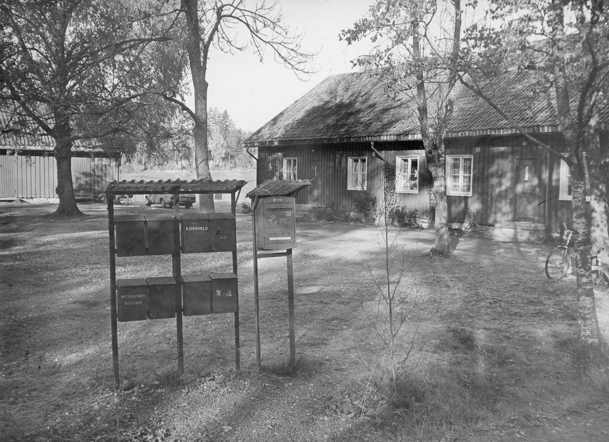 postkasser, private, 1 offentlig, på en plen, sykkel, eksteriør