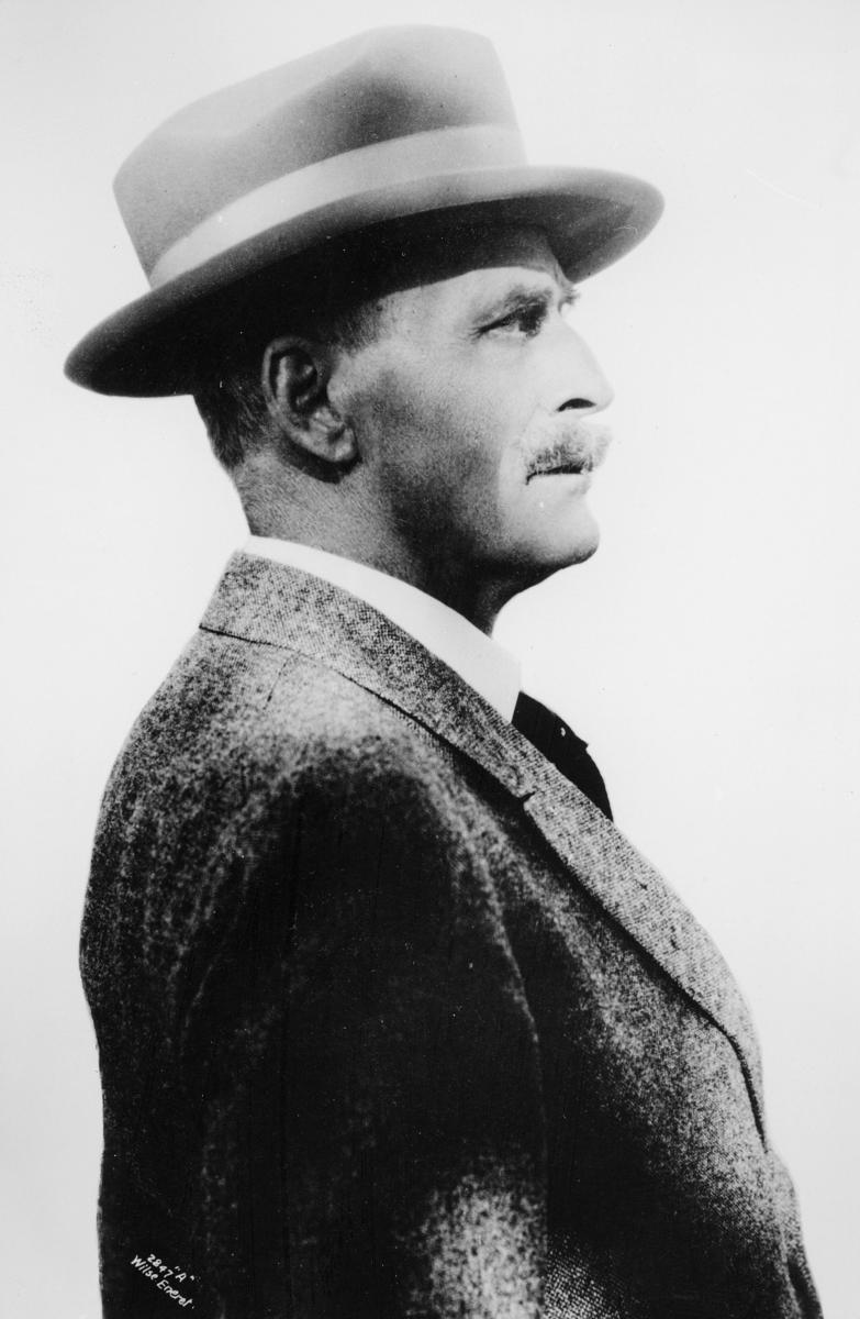 portrett, mann, forfatter, Knut Hamsun