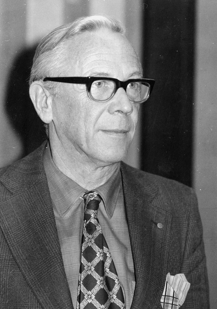 portrett, mann, distriktsjef Ole Johan Frithland Broch
