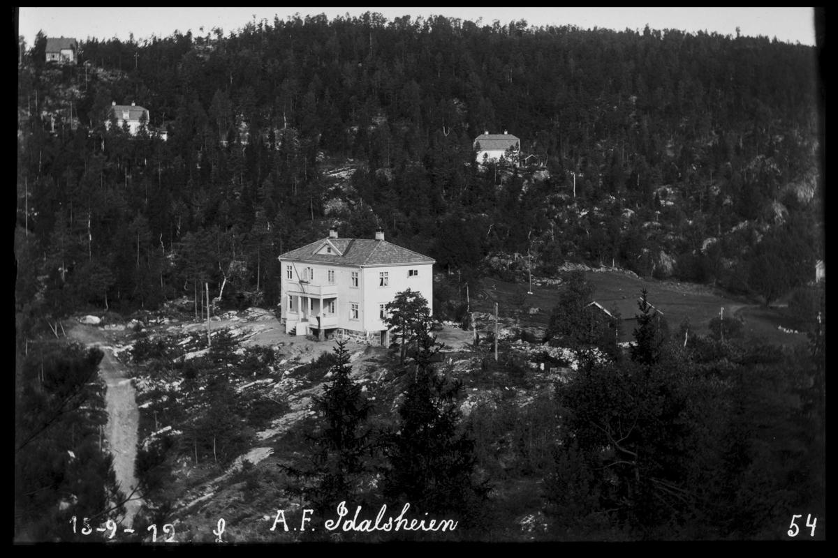 """Arendal Fossekompani i begynnelsen av 1900-tallet CD merket 0470, Bilde: 33 Sted: Bøylefoss Beskrivelse: Huset """"Firkanten"""" med Idalsheia og bebyggelse"""