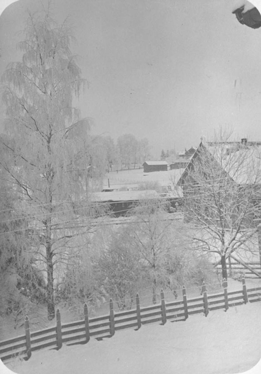 Vinterbilde, trær, gjerde, stasjonsbygninger