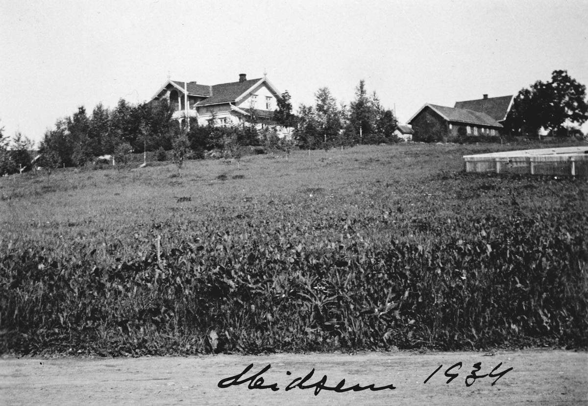 Midsem gård