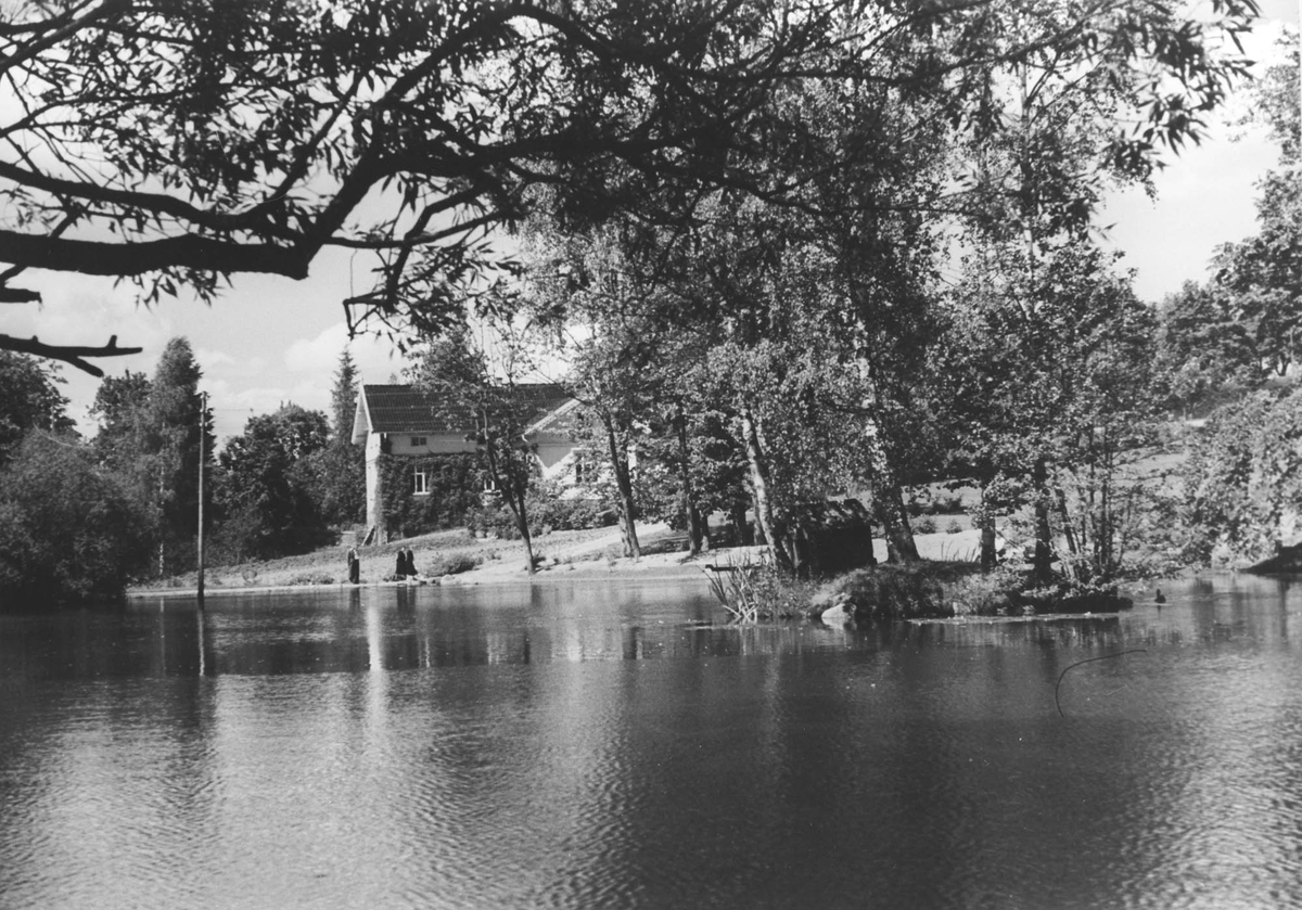 Thorsrudgården, tidligere Misværgården ved andedammen.