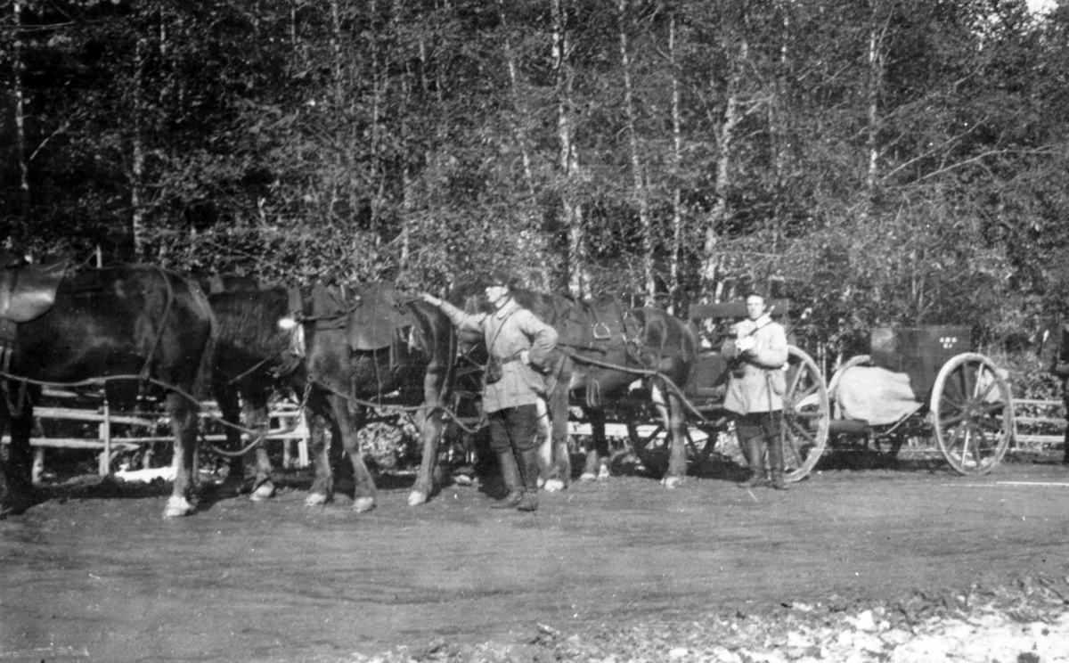 Befalskolesoldater med et seksspann foran en transportvogn