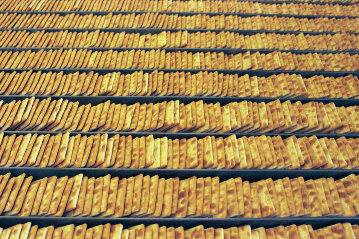 """Cream Cracker, kjeks, fabrikkmiljø. Kjeks stuet opp i """"stackeren""""."""