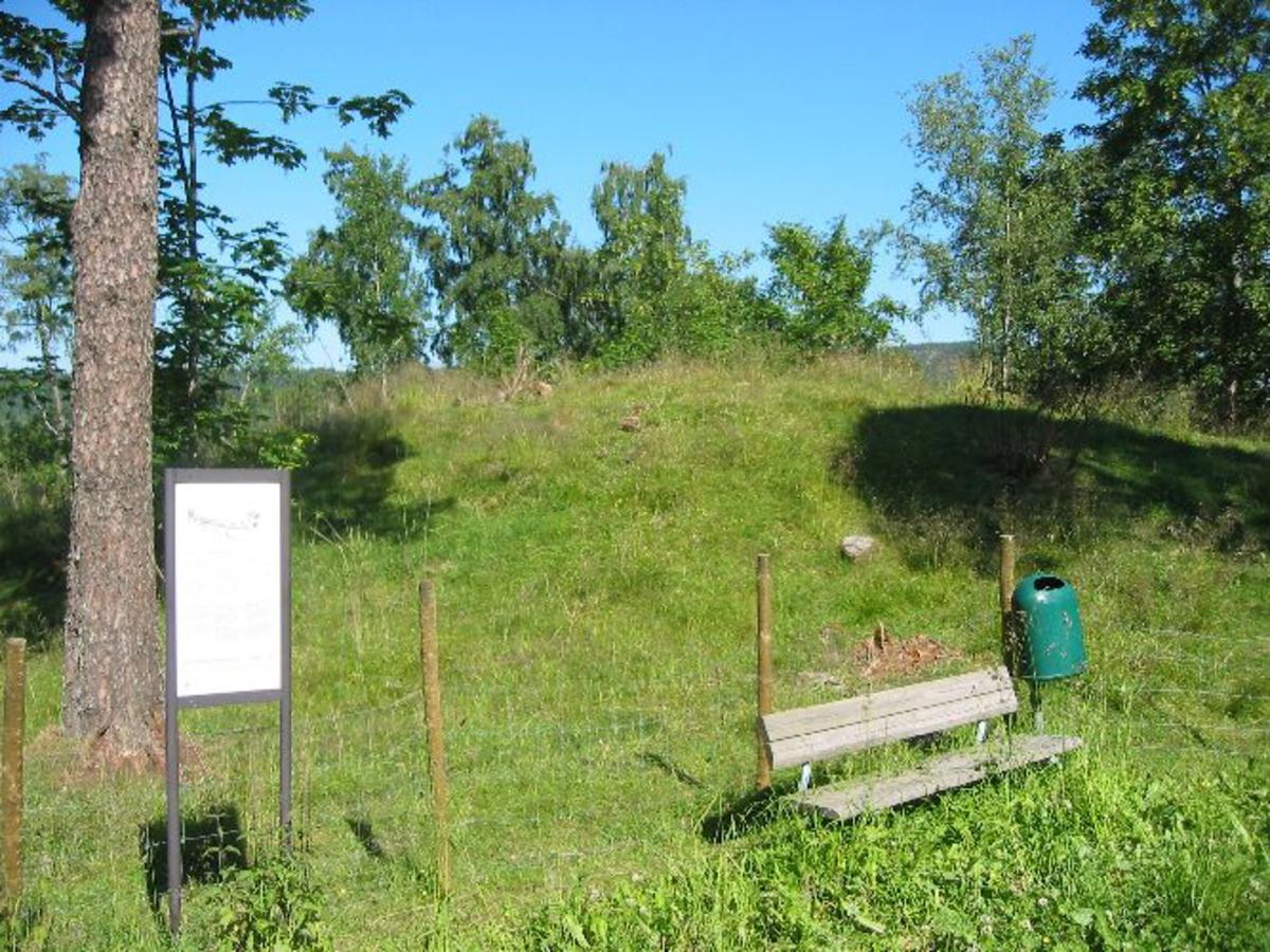 Arkeologisk område med mengder av fornminner.