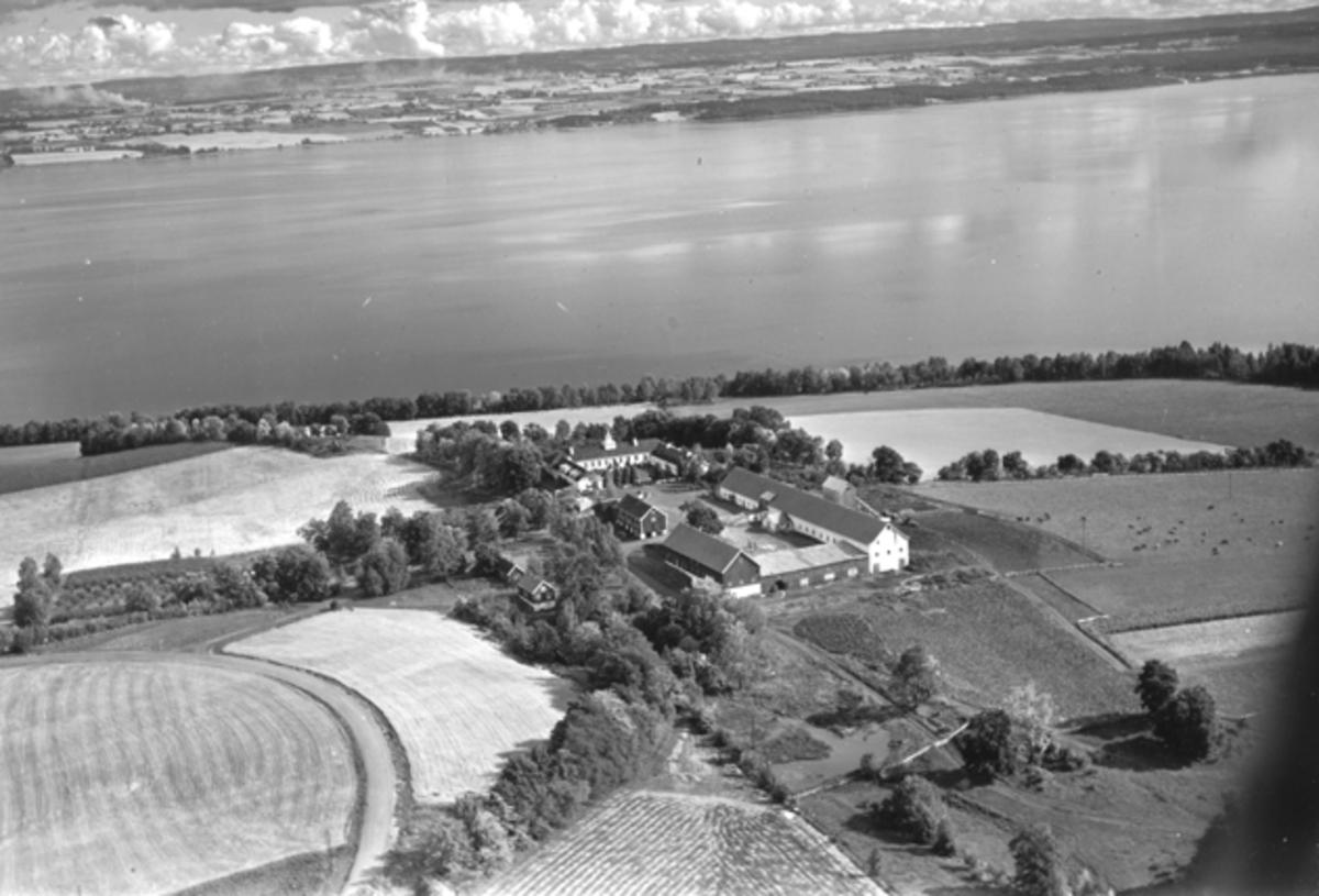 Flyfoto, gardsbruk, Hovinsholm, Helgøya, Toten i bakgrunn.