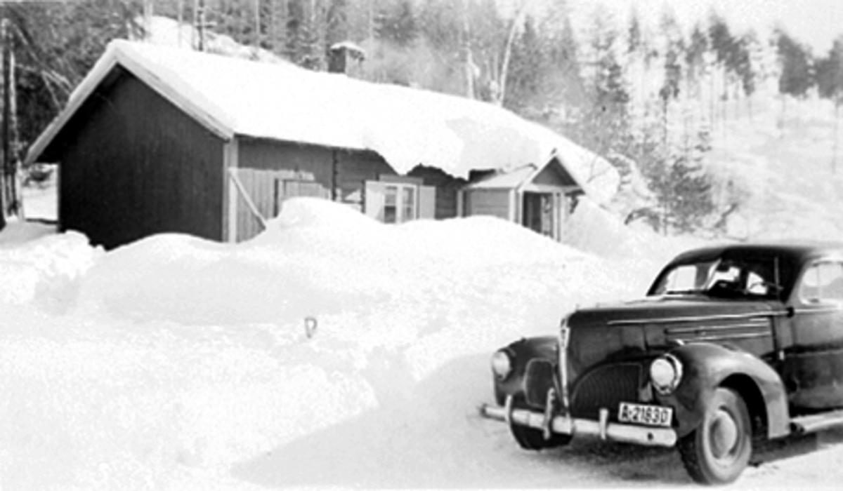 bjørnstad bil