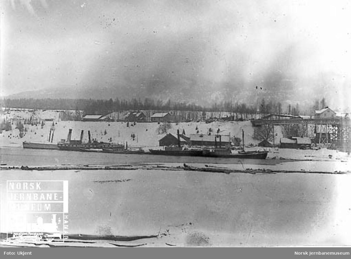 Dampbåter i vinteropplag på Minnesund, bl.a. Skibladner, Thor, Tordenskjold og Viken