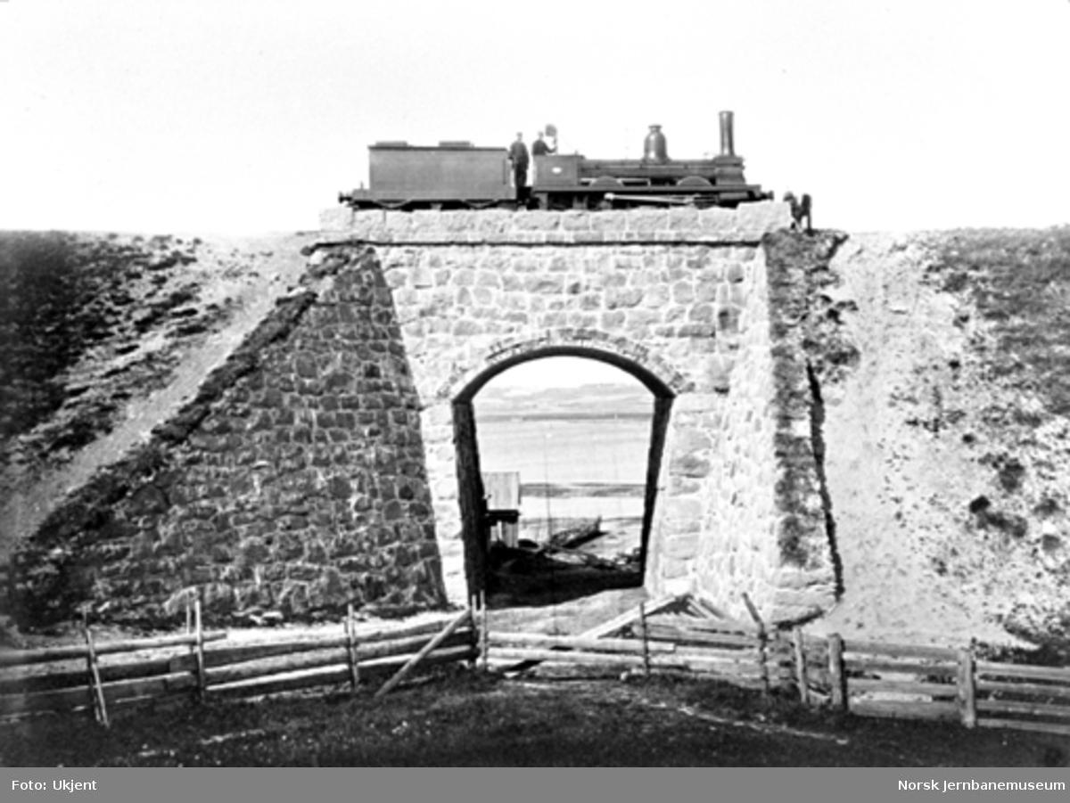 Damplokomotiv på Strandbakke bru, som sammen med en fylling i 1861 erstattet en trebru
