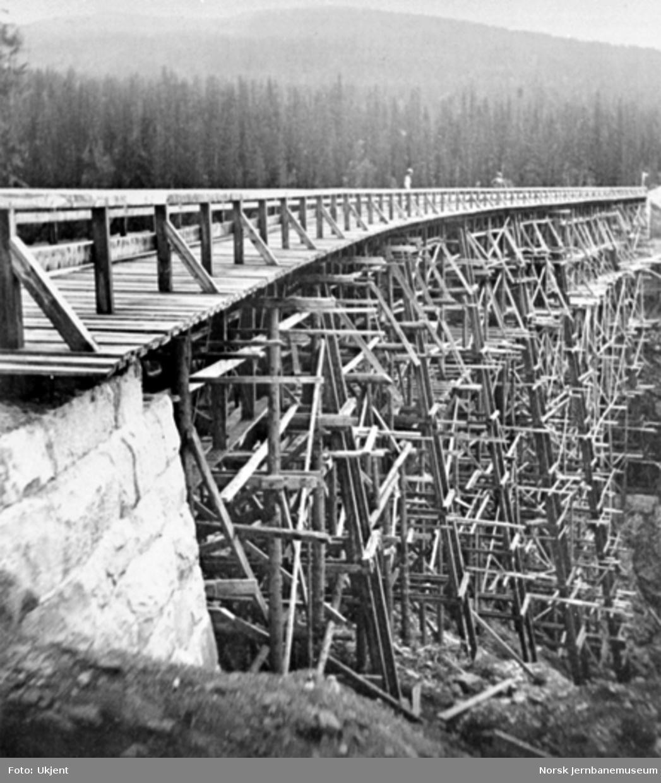 Drøia viadukt, fotografert fra siden av det ene brukaret