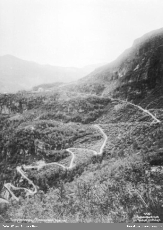 Anleggsvegen i Flåmsdalen