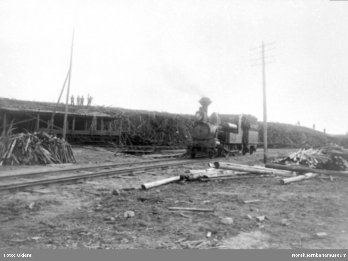Damplokomotiv type IX med vedkarmer på tenderen foran vedlageret på Rena Kartonfabrik under 1. verdenskrig