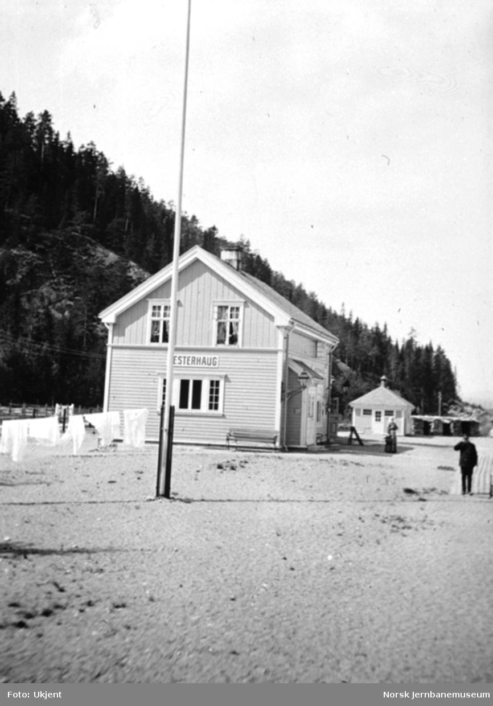 Vesterhaug stasjonsbygning og privet, fotografert ut fra toget
