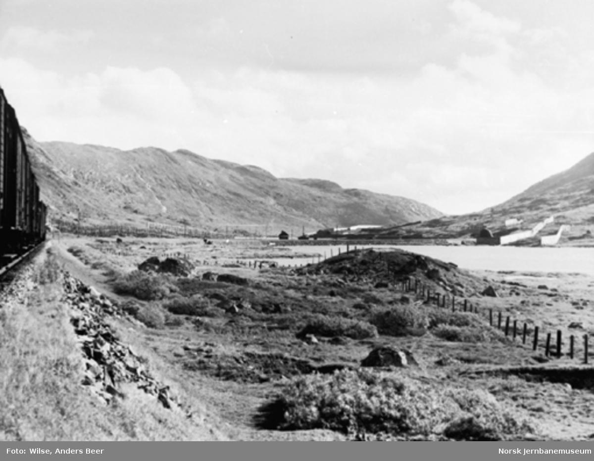 Bergenbanen ved Storurdi : godstog i bildekanten
