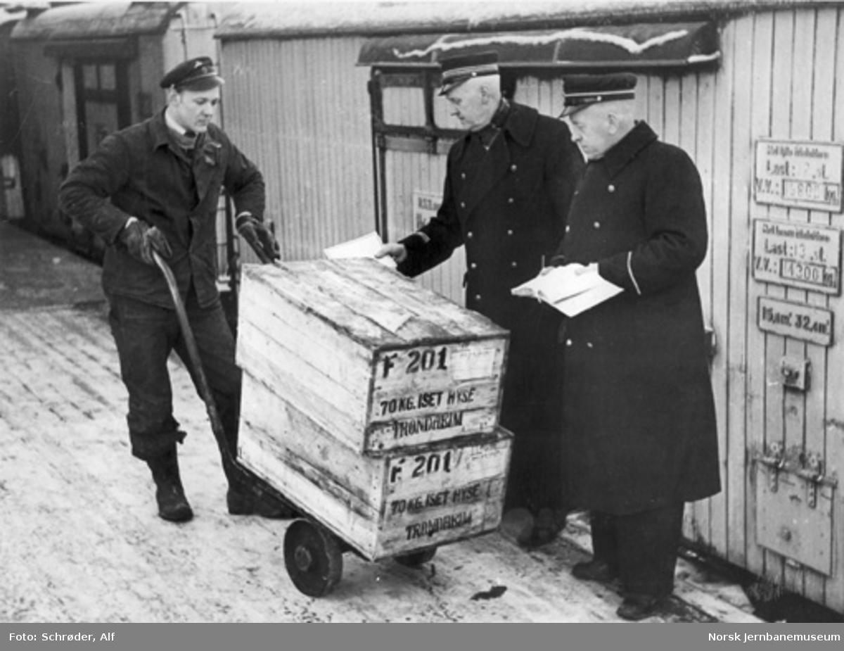 Inspeksjon av to kasser hyse på godsrampa