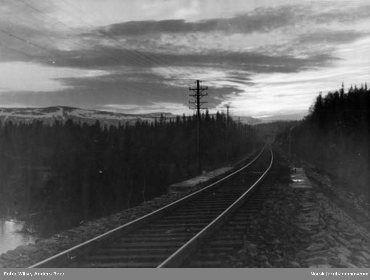 Nordlandsbanen ved Laksfors