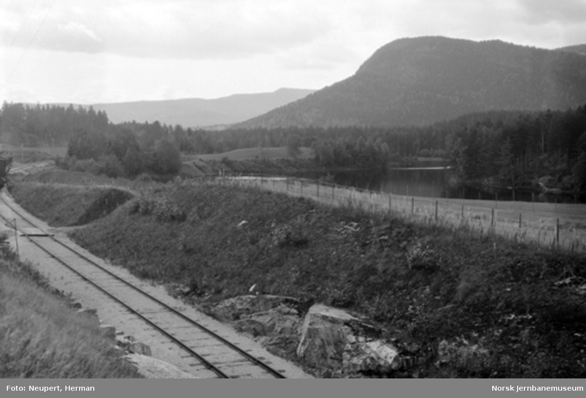 Parti fra Numedalsbanen; damplokomotiv med persontog i bildekanten