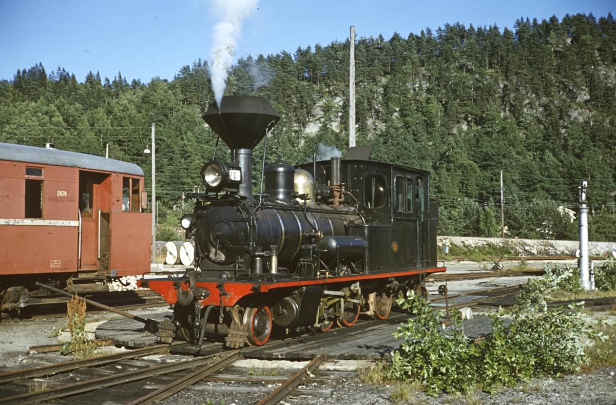 Setesdalsbanens damplok nr. 2 og motorvogn 2674.