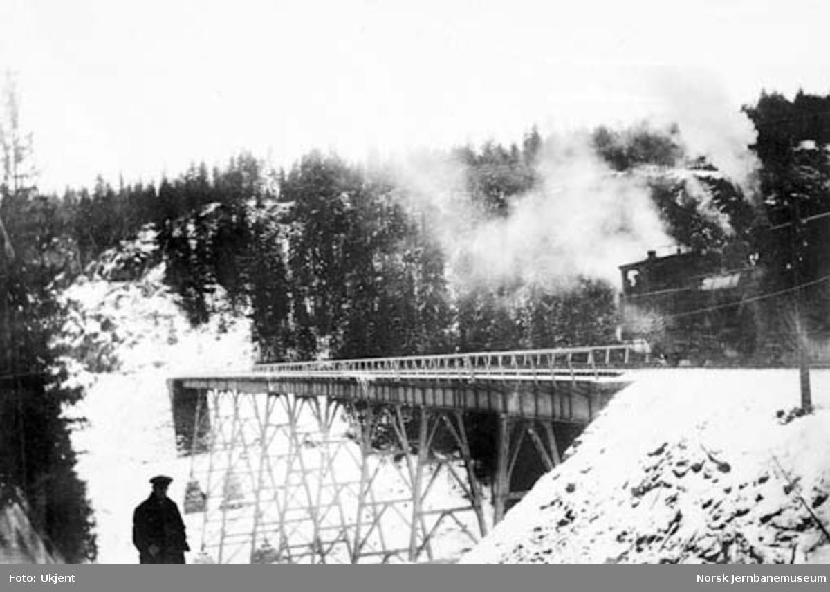 Tjerndalen viadukt