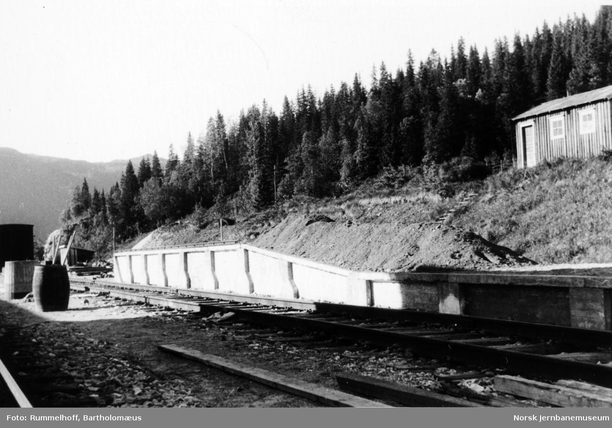 Finneidfjord stasjon, bygging av godsrampe